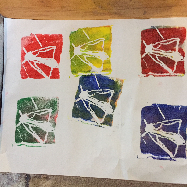 Photo of colourful moth prints made in a print workshop run by Skirrid Print Studio at the Hub in Peterchurch