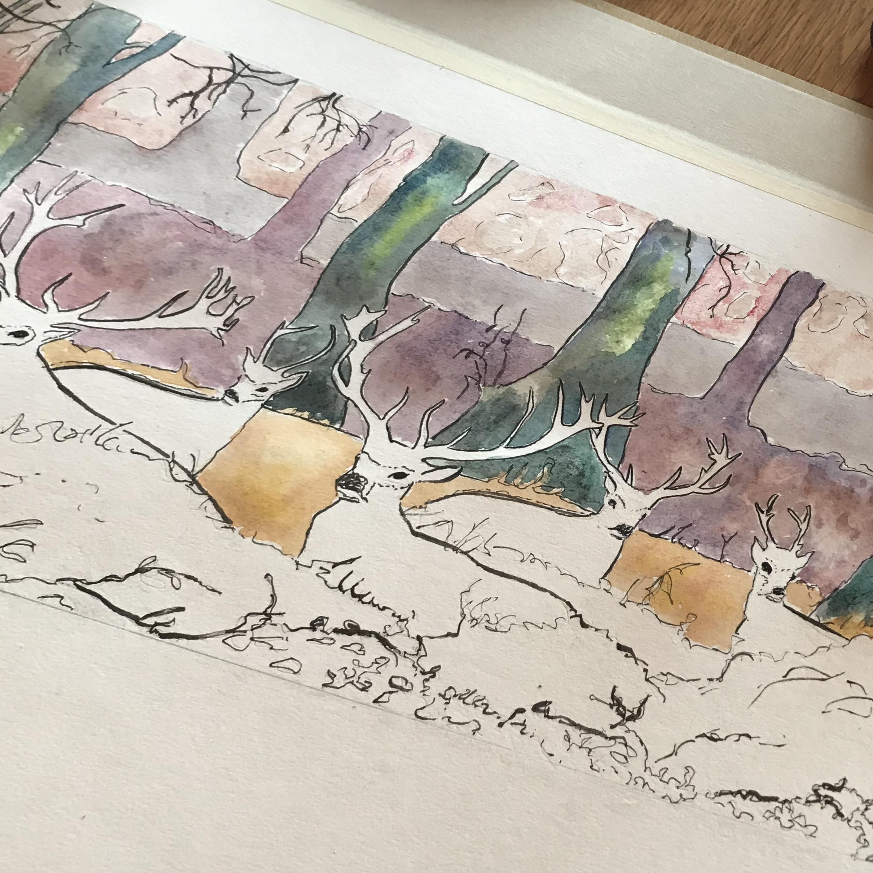 Skirrid Print Studio deer sketch/watercolour1
